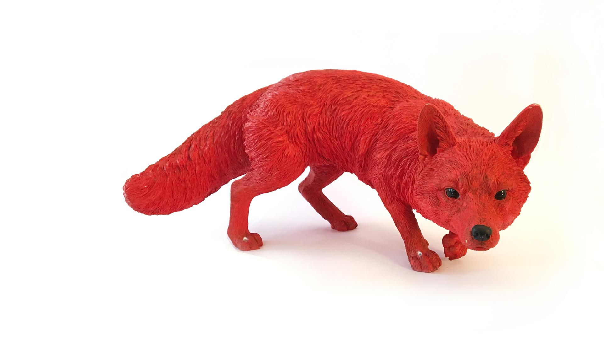 Real Life Prowling Fox - Celebrity Big Brother 2017
