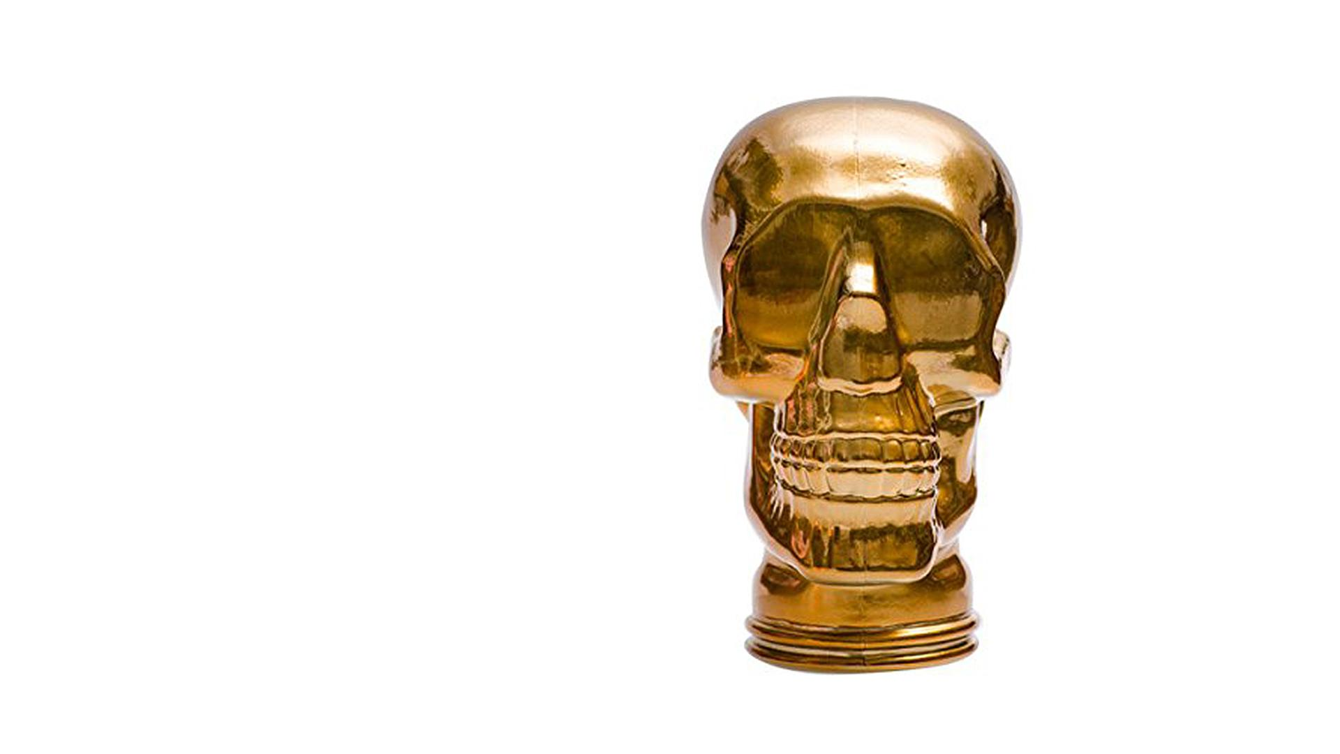 Glass Skull Stand - Big Brother 2017
