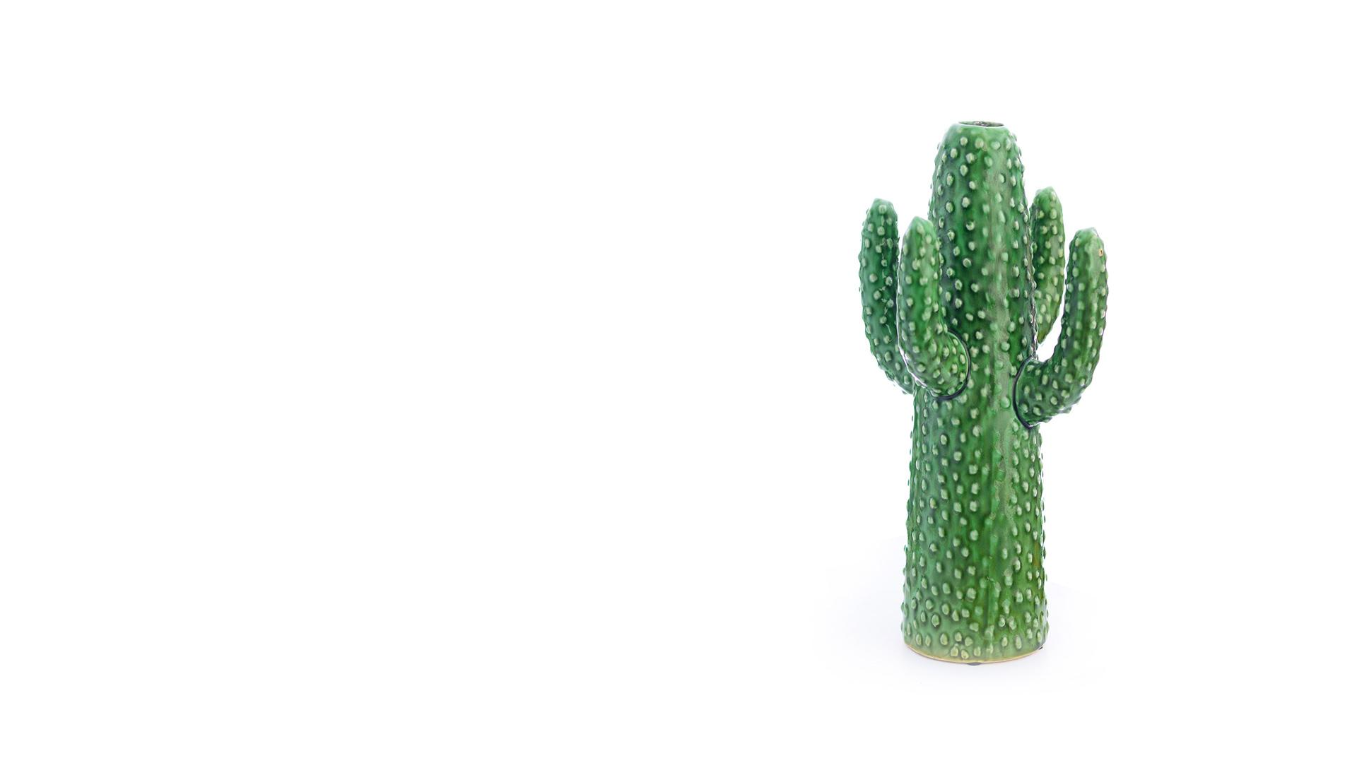 Medium Cactus Vase - Celebrity Big Brother Summer