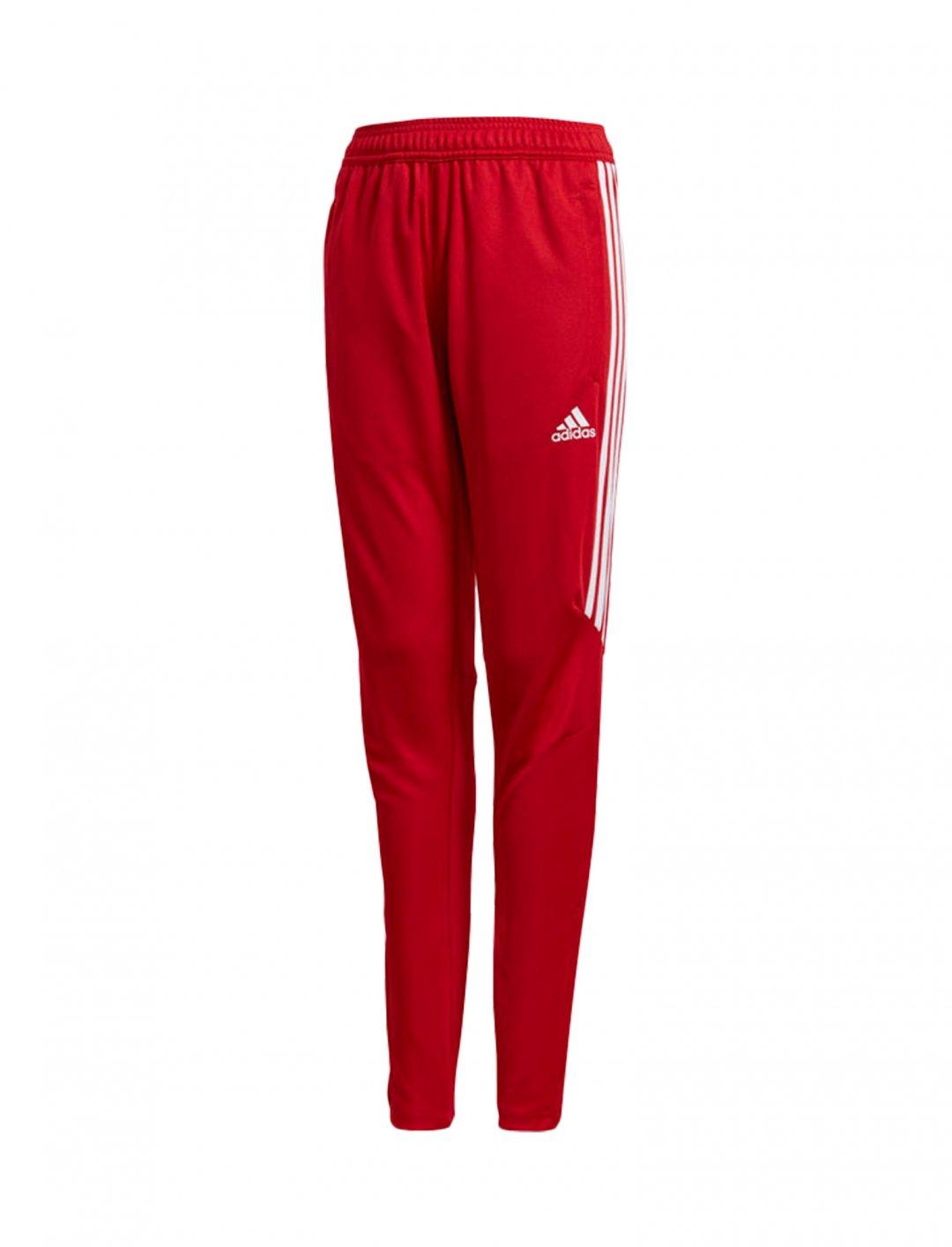 "Adidas Training Pants {""id"":5,""product_section_id"":1,""name"":""Clothing"",""order"":5} Adidas"