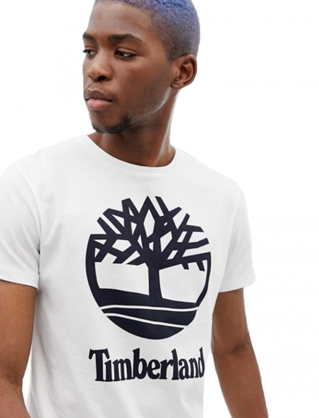 "Logo T-Shirt {""id"":5,""product_section_id"":1,""name"":""Clothing"",""order"":5} Timberland"