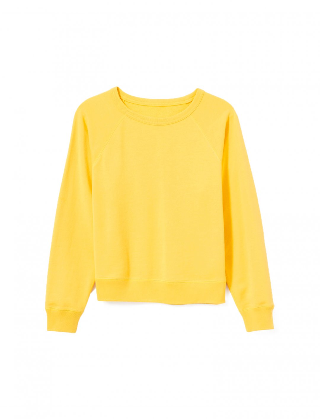 "Basic Sweatshirt {""id"":5,""product_section_id"":1,""name"":""Clothing"",""order"":5} Everlane"