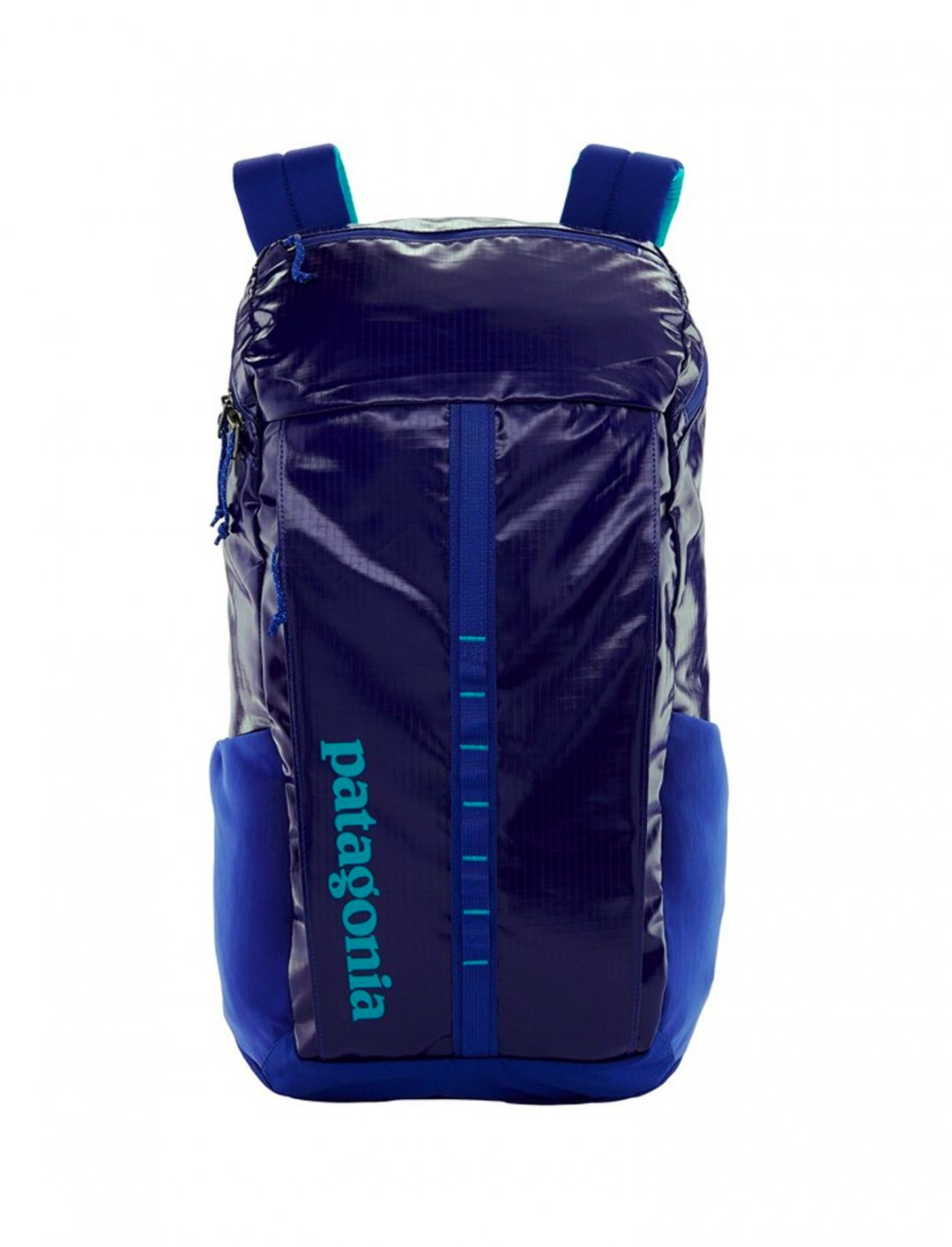 """Black Hole Backpack {""""id"""":1,""""product_section_id"""":1,""""name"""":""""Bags"""",""""order"""":1} Patagonia"""