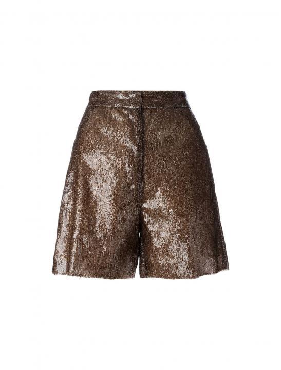 Sequin Shorts - Zara Larsson