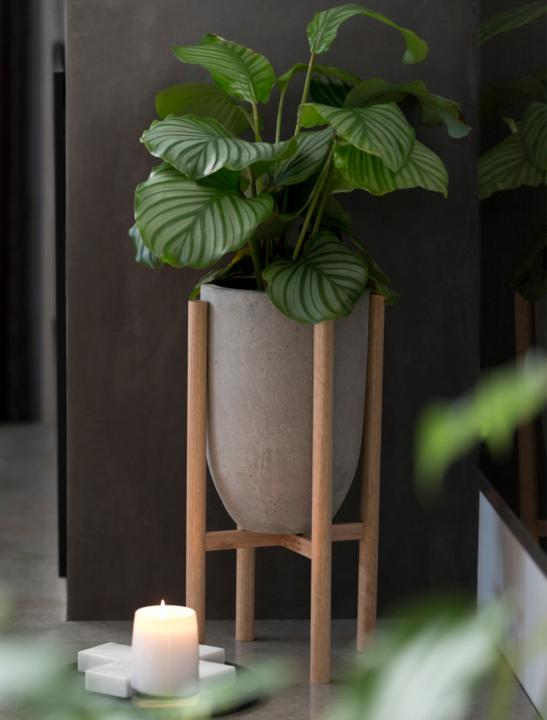 Planter With Timber Legs - Celebrity Big Brother Summer